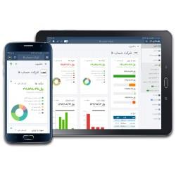 نرم افزار حسابداری و مدیریت کسب و کار آنلاین حساب فا